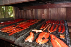 Salmon Camp 2016 - Smoking Fish